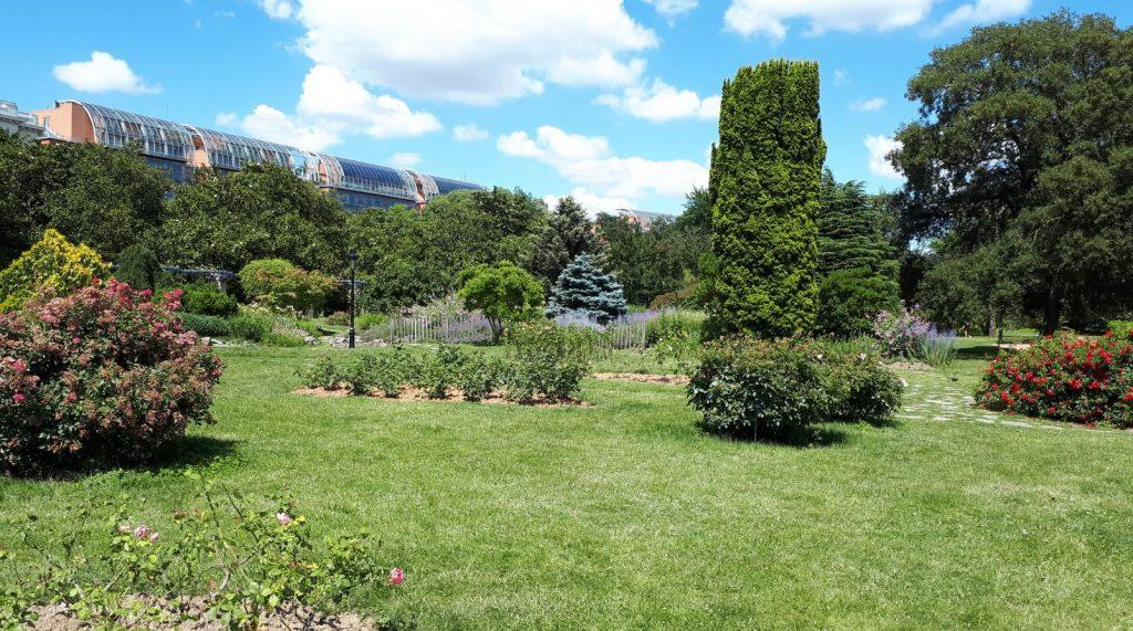 Le parc avec la Cité Internationale au loin